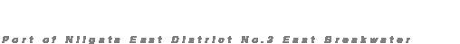 新潟東港第2東防波堤管理釣り場